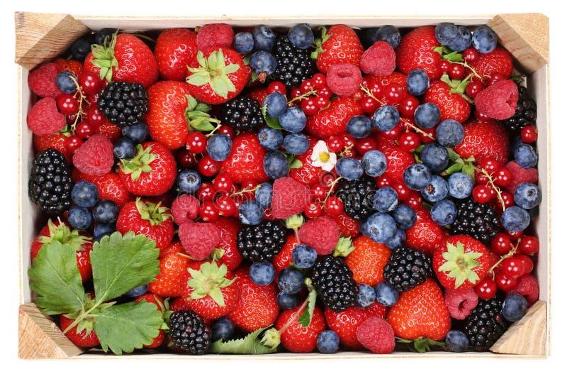 Beerenobst in der Holzkiste mit Erdbeeren, Blaubeeren und ch stockbild