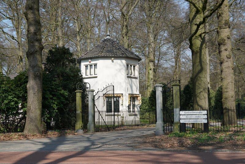 Beerschotenbos dichtbij De Bilt in Nederland stock foto