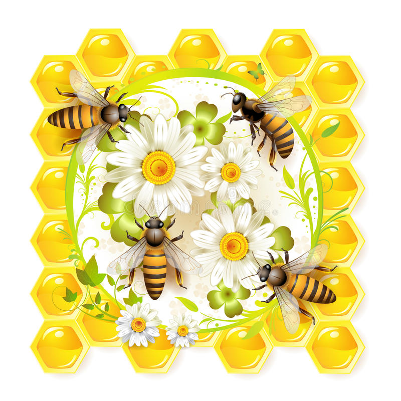 Bees with flowers royalty free illustration