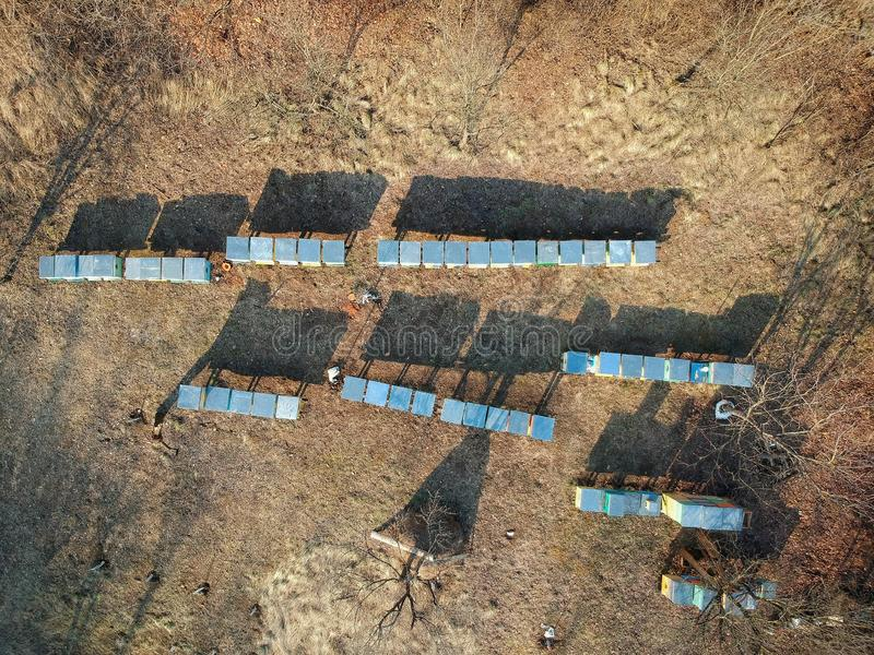 Bees hives seen from above, photo taken by a drone stock image
