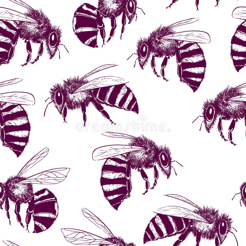 Download Bees seamless pattern stock vector. Image of beekeeping - 83703990