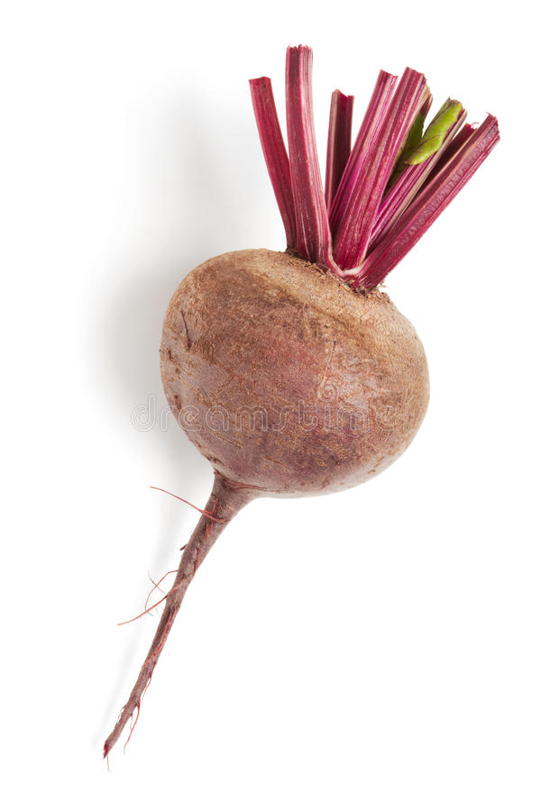 Beet. Single beet isolated on a white royalty free stock photo