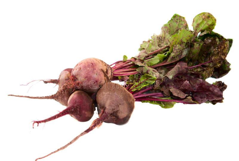 Download Beet stock photo. Image of organic, common, stripe, healthy - 20859008