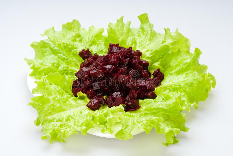 Download Beet stock image. Image of beet, cookin, dish, lettuce - 25691477