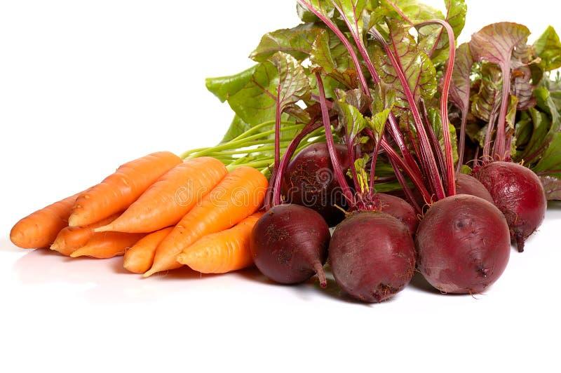 Beet&carrot photos stock