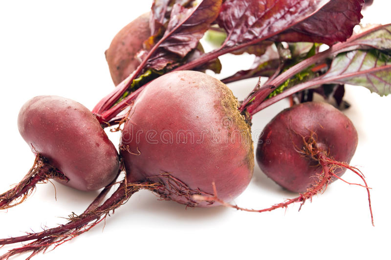 Beet with leaves royalty free stock image