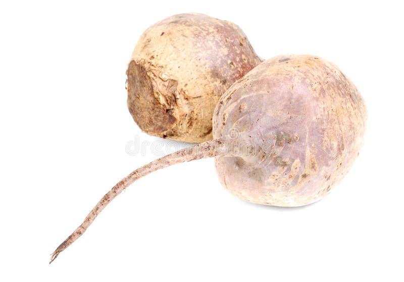 Beet Purple Vegetable Royalty Free Stock Image