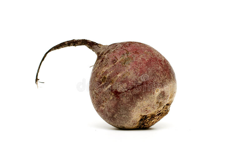 Beet-root. On white background royalty free stock image