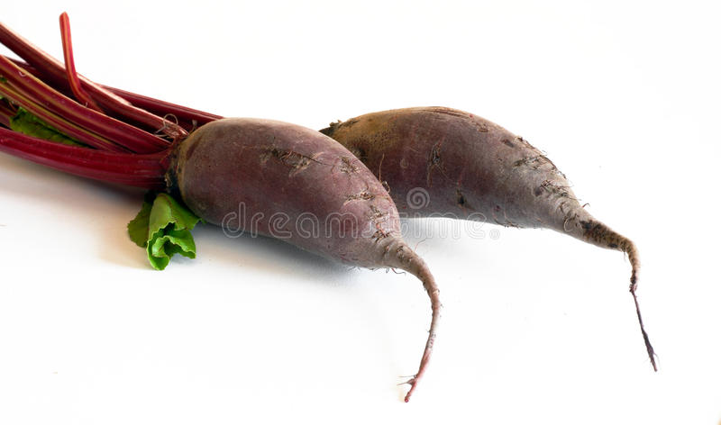 Beet roots. Two raw beet roots over white background royalty free stock photos