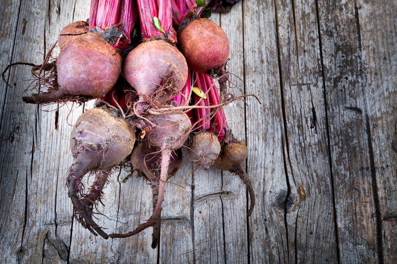 Beet Roots. Fresh organic beets just picked from the garden on an old wooden table royalty free stock images