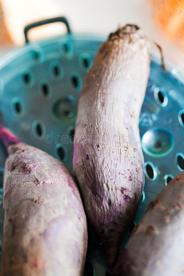 Download Beet in steamer stock image. Image of beetroot, still - 23620957