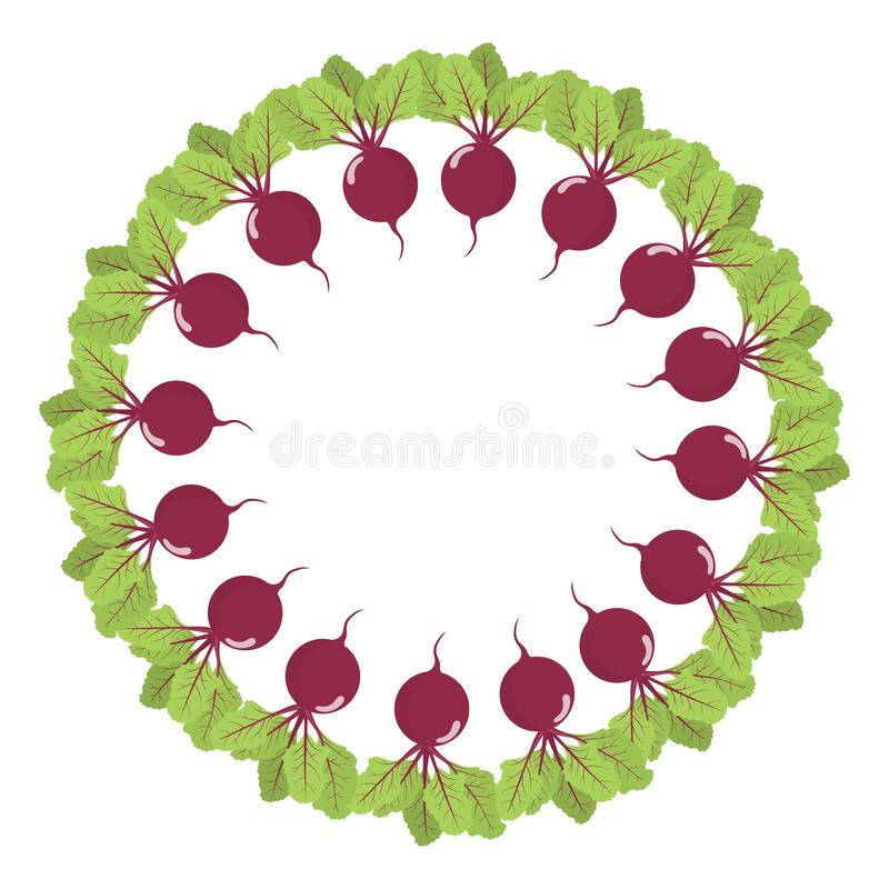 Beet wreath. Fresh vegetables. Organic food. Vector illustration on white background. Beet wreath. Fresh vegetables. Organic food. Vector illustration on white royalty free illustration