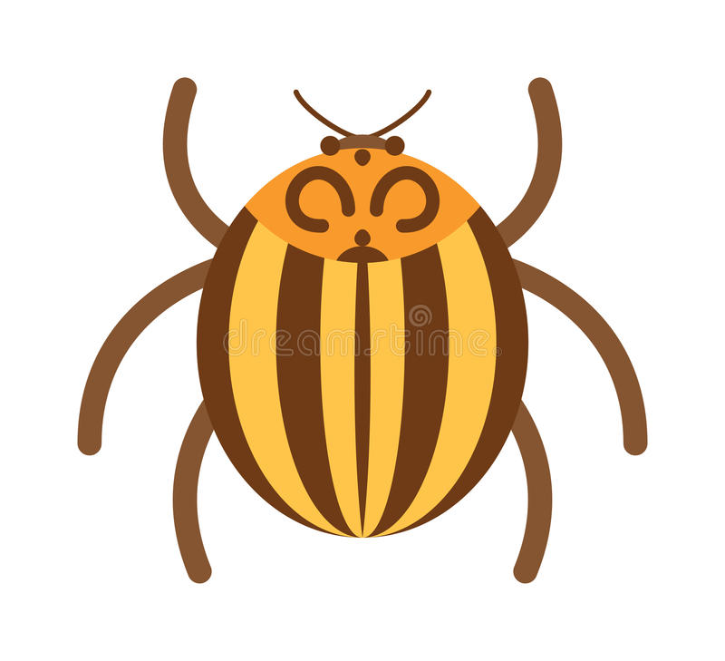 Beetle flat insect bug in cartoon style vector illustration royalty free illustration