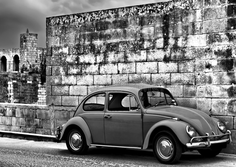 Beetle on the Wall royalty free stock images
