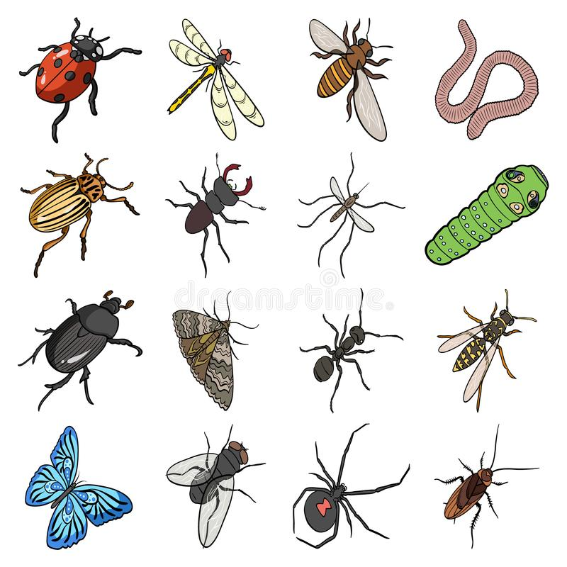 Beetle, wasp, bee, ant, fly, spider, mosquito and other insect species. Various insects set collection icons in cartoon. Style vector symbol stock isometric royalty free illustration