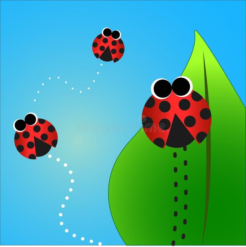 Beetles stock photography