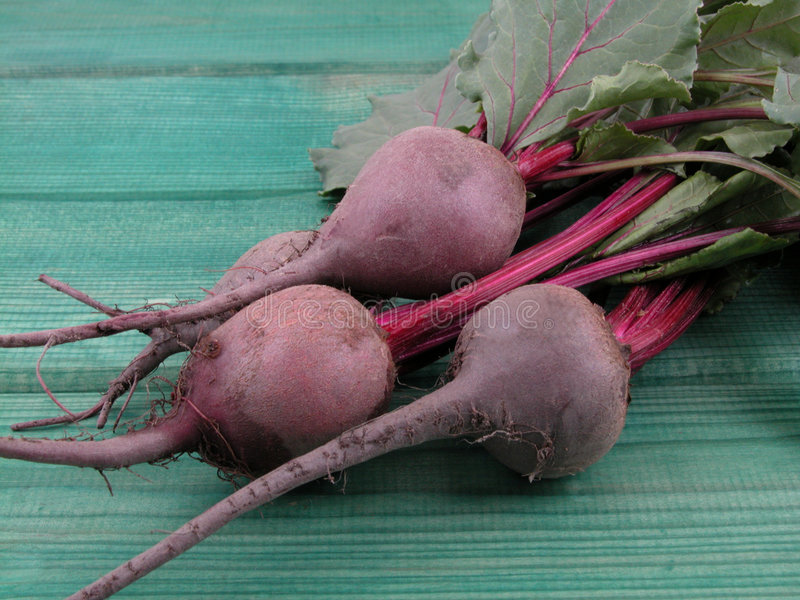 Beetroot. Bunch of fresh beetroots royalty free stock photography