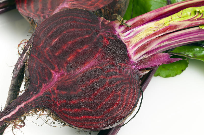 Beetroot. Is any of the cultivated varieties of beet (Beta vulgaris) grown for their edible taproots, especially B. vulgaris L. subsp. conditiva. It consists of royalty free stock photos