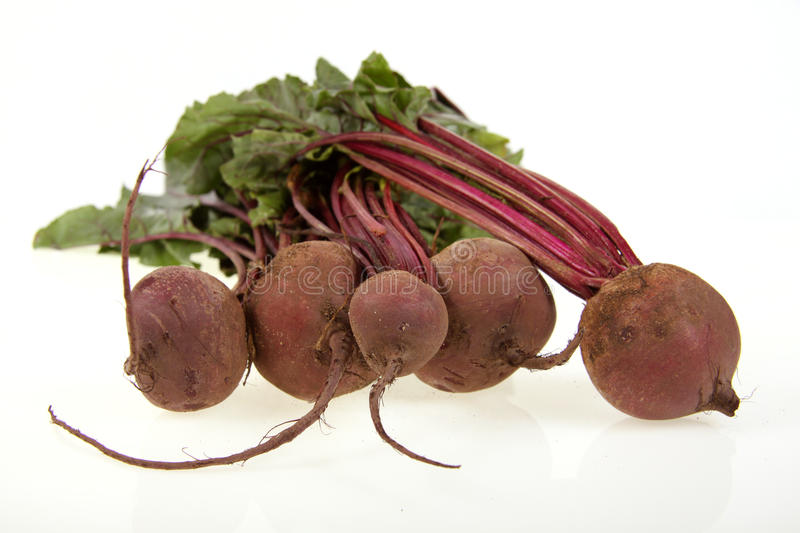 Beetroot bunch. A bunch of fresh beetroot on a white background royalty free stock image