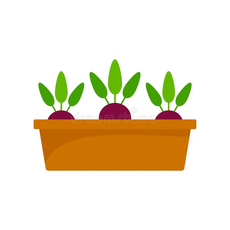 Beetroot in ground pot icon, flat style. Beetroot in ground pot icon. Flat illustration of beetroot in ground pot vector icon for web design royalty free illustration