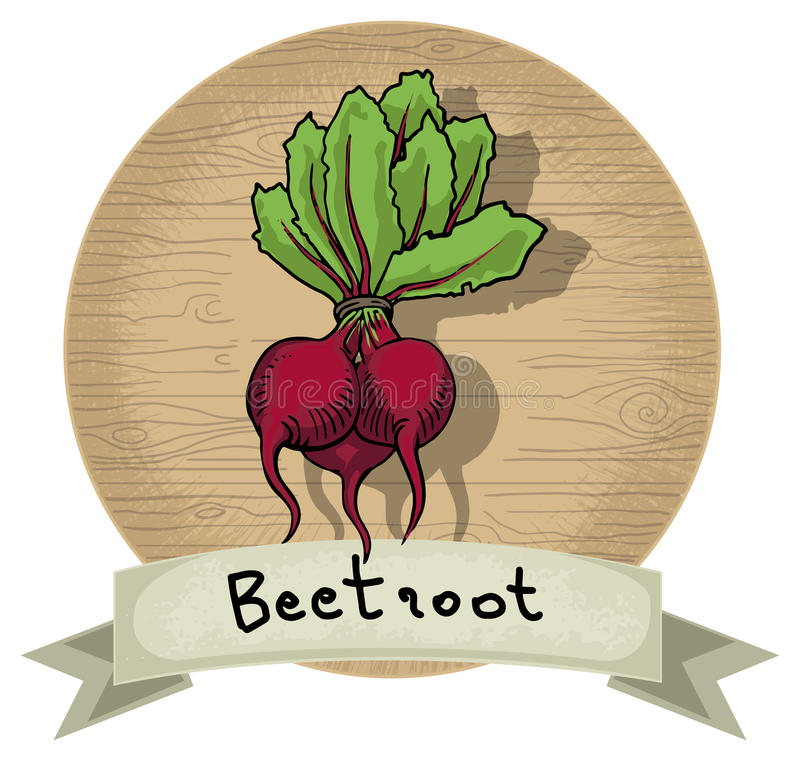 Beetroot. Hand drawn beetroot icon, with a name and wooden background vector illustration