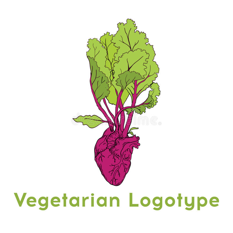 Beetroot heart vegetable logo icon template design. Purple beet icon logo. Fresh vegetarian concept. Health vegetarian logo. Isolated on pattern background royalty free illustration