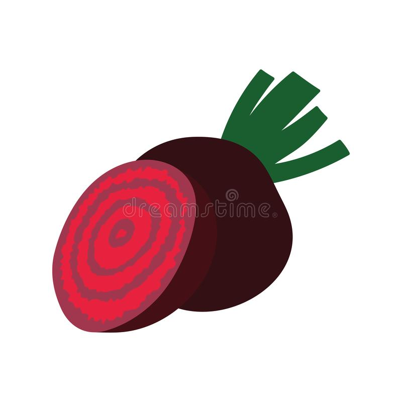 Beetroot  icon vector illustration