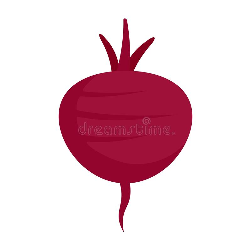 Beetroot icon, flat style. Beetroot icon. Flat illustration of beetroot vector icon for web design vector illustration