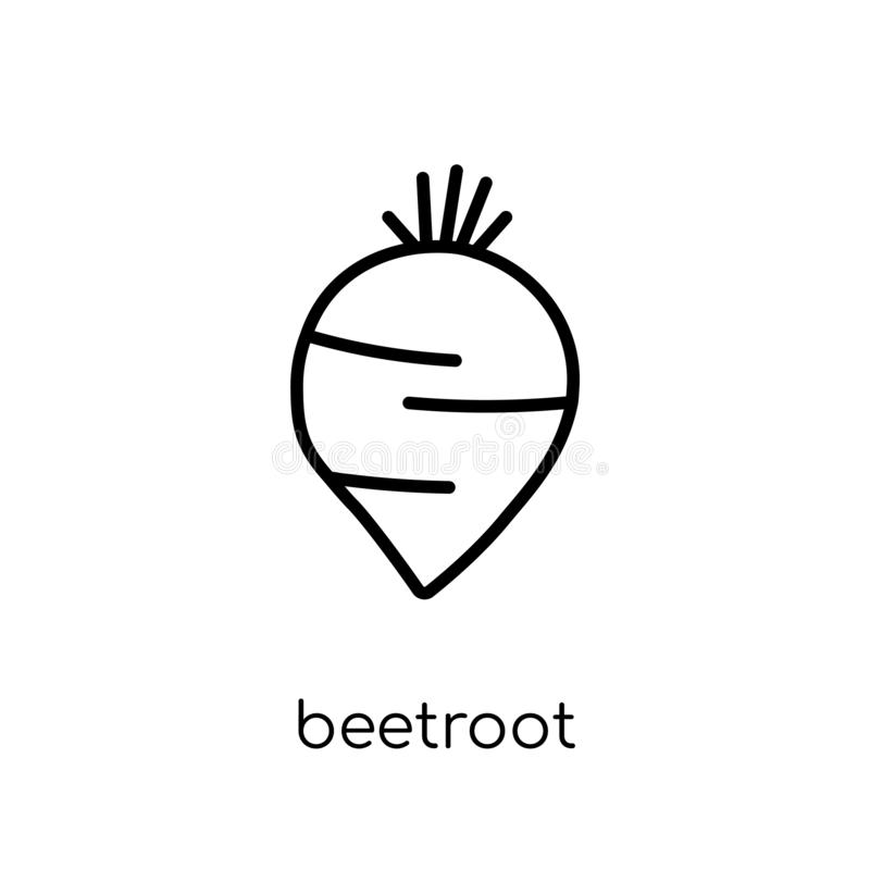 Beetroot icon from Fruit and vegetables collection. Beetroot icon. Trendy modern flat linear vector beetroot icon on white background from thin line Fruit and vector illustration