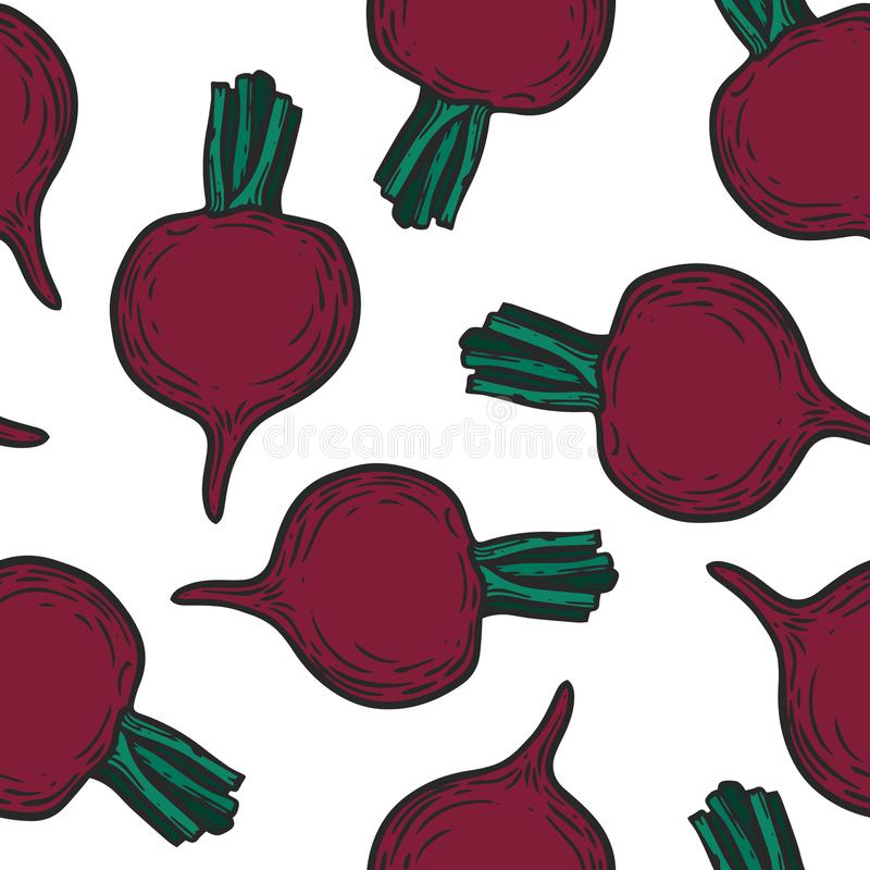 Beetroot pattern. Vegetarian food. Hand drawn beetroot seamless pattern. Vector vintage vegetables illustration. For wrapping paper, street festival, farmers royalty free illustration