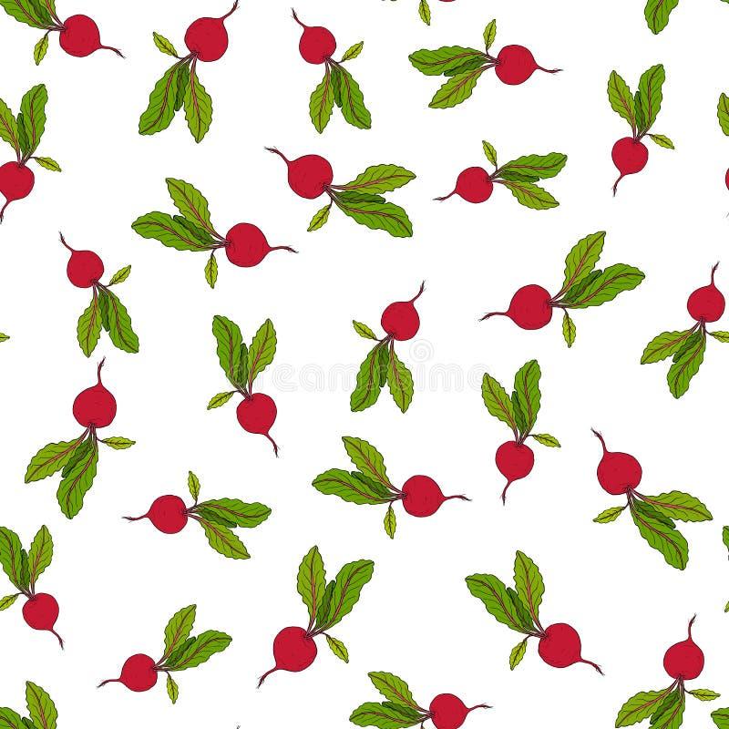 Beetroot seamless pattern stock illustration