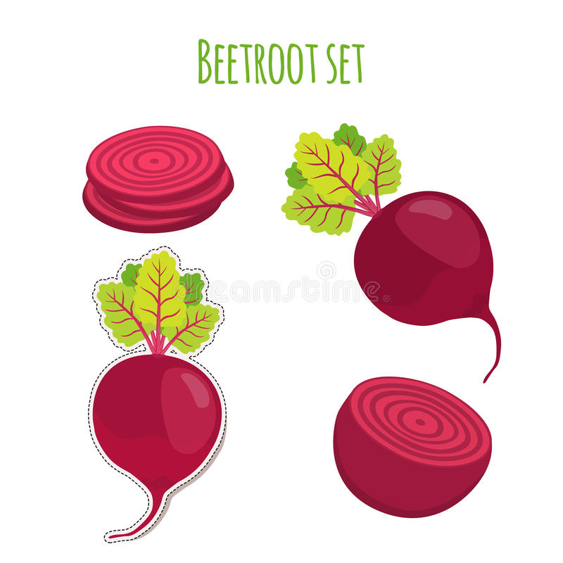 Beetroot set made in cartoon flat style. Label for market. S, shops, garden vegetables. Organic nutrition royalty free illustration