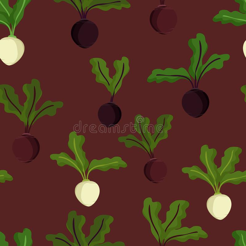 Beetroot and sugar beet. Vector background royalty free illustration
