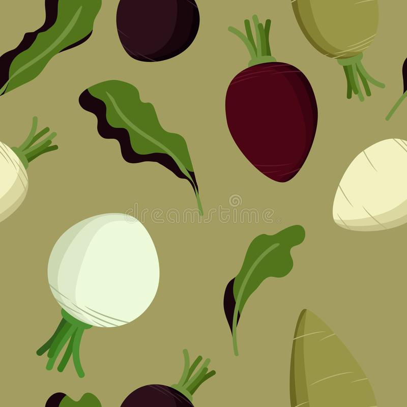 Beetroot, sugar beet and turnip. Vector background vector illustration