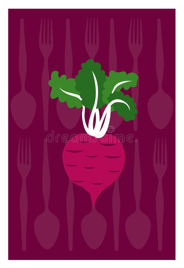 Beetroot. Vector of beetroot on purple background. Eps10 royalty free illustration