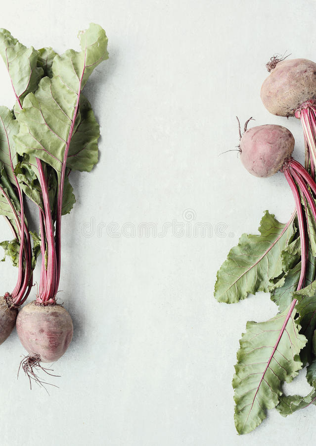 Beetroot. Vegetable. Beetroot on the table royalty free illustration