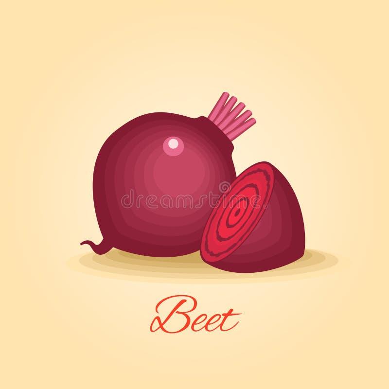 Beetroot vegetable vector royalty free illustration
