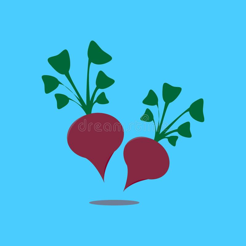 Beetroot - Vegetable Vector. Template.Food wallpapers from vegetables vector illustration