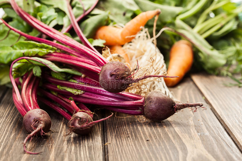 Beetroots, carrots and leek stock photography