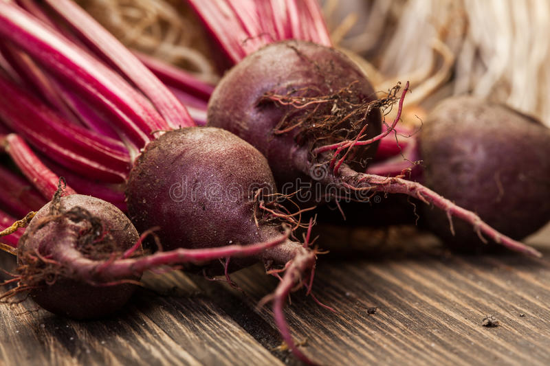 Beetroots, carrots and leek royalty free stock photos