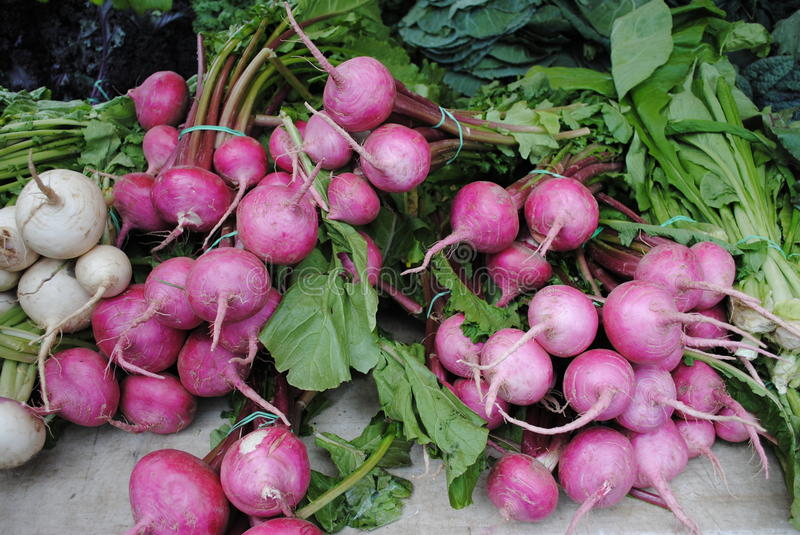 Beets. Bunches of fresh beets for sale royalty free stock image