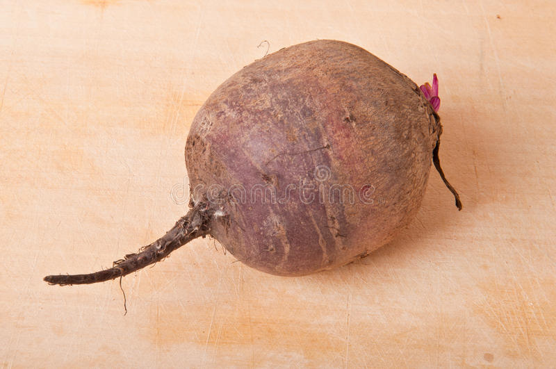 Download Beets Royalty Free Stock Images - Image: 27603249