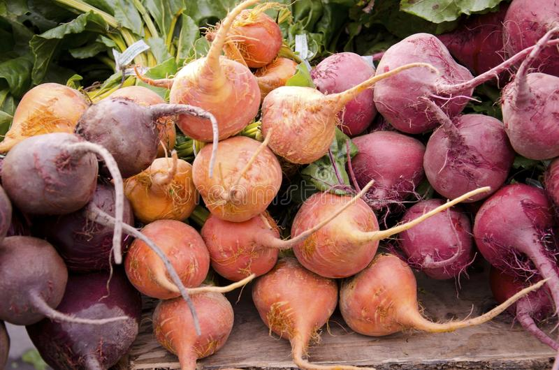 Beets. Bunches of beets in three colors: orange, purple and red, for sale in the outdoor farm market royalty free stock photos