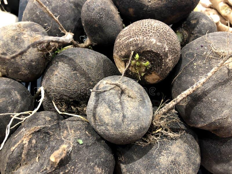 beets Für Verkauf im Markt Ein lebendes Fragment von einem Obst- und Gemüse Speicher stockbild