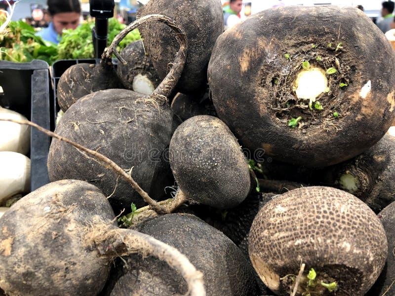 beets Für Verkauf im Markt Ein lebendes Fragment von einem Obst- und Gemüse Speicher lizenzfreies stockbild