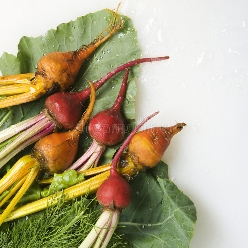 Beets with greens. Freshly washed red and golden beets resting on lettuce leaf royalty free stock image