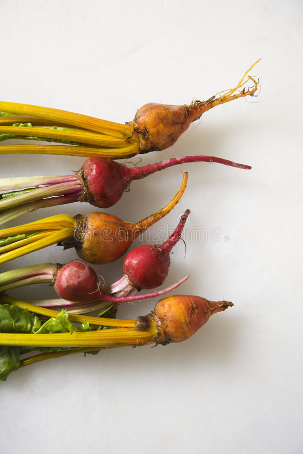 Beets with greens. Freshly washed red and golden beets resting on counter top stock photo