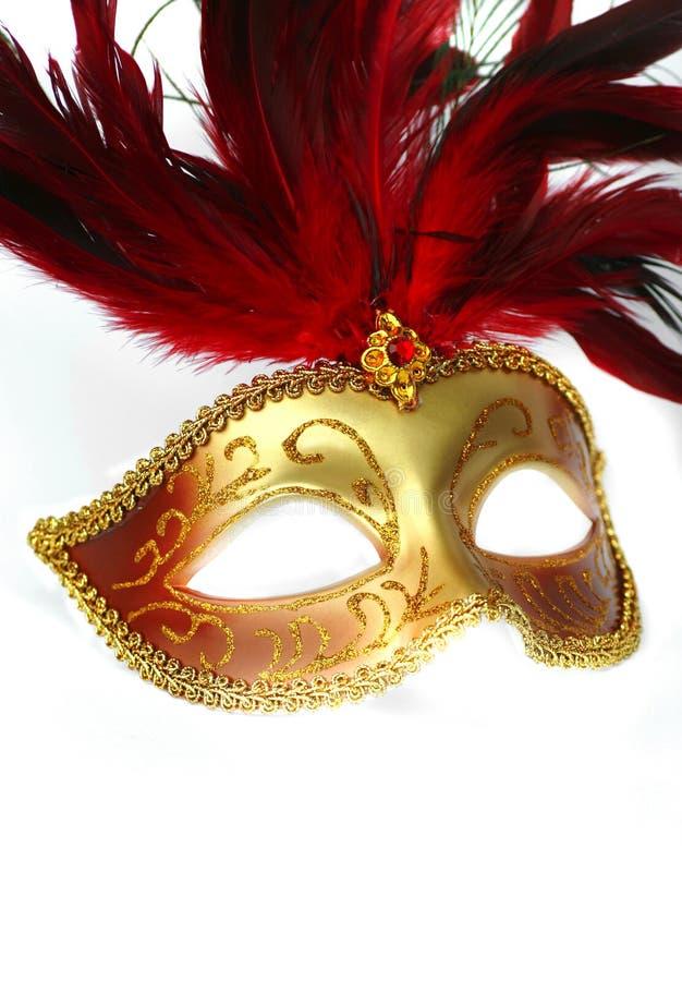 befjädrad maskering för klänning infall arkivbild