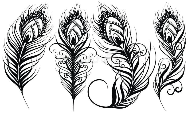 befjädrar påfågeln Exotisk illustration för vektor för fågelfjädrar stock illustrationer