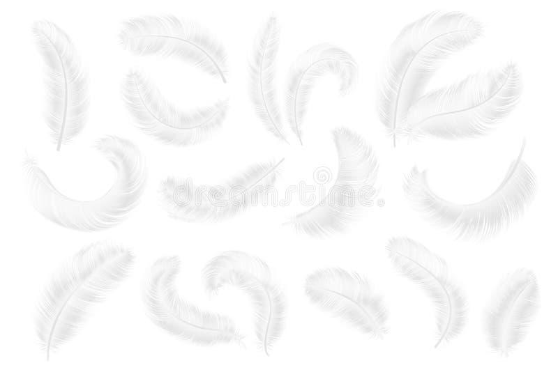 befjädrar white Realistiska fjädrar för ängel, för gås eller för svan tyngdlöst putsar falla 3d den isolerade vektorsamlingen royaltyfri illustrationer